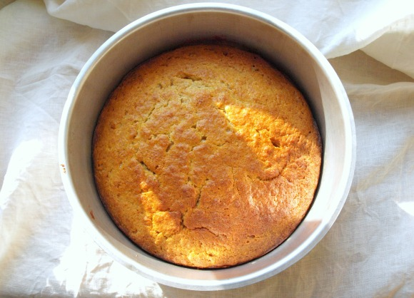 Fructose-Low Orange-Ricotta-Cake // by Fructopia