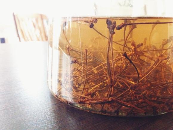 Time to create and cherry stem tea // Zeit etwas zu schaffen und Kirschstieltee // by Fructopia